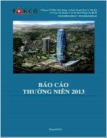 Báo cáo thường niên năm 2012 - Công  ty Cổ phần Xây dựng và Kinh doanh Địa ốc Tân Kỷ