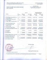 Báo cáo KQKD quý 4 năm 2010 - Công ty Cổ phần Đầu tư Điện Tây Nguyên
