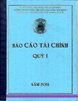 Báo cáo tài chính công ty mẹ quý 1 năm 2014 - Công ty cổ phần Vận chuyển Sài Gòn Tourist
