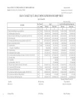 Báo cáo KQKD hợp nhất quý 1 năm 2011 - Công ty Cổ phần Giống cây trồng Miền Nam