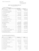Báo cáo tài chính quý 2 năm 2009 - Công ty Cổ phần Sông Đà 7.04