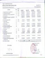 Báo cáo KQKD quý 2 năm 2011 - Công ty Cổ phần Siêu Thanh