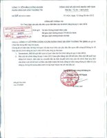 Báo cáo tài chính công ty mẹ quý 2 năm 2012 - Công ty Cổ phần Chứng khoán Ngân hàng Sài Gòn Thương Tín