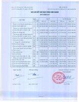 Báo cáo KQKD công ty mẹ quý 4 năm 2012 - Công ty Cổ phần Phát triển Nhà Thủ Đức