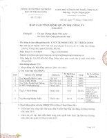 Báo cáo tình hình quản trị công ty - Công ty Cổ phần Tập đoàn Đầu tư Thăng Long