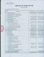 Báo cáo tài chính quý 1 năm 2009 - Công ty Cổ phần Xây dựng hạ tầng Sông Đà