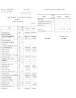 Báo cáo tài chính hợp nhất quý 4 năm 2008 - Công ty Cổ phần Đại lý Vận tải SAFI