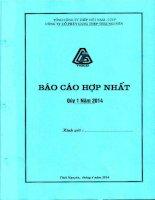 Báo cáo tài chính hợp nhất quý 1 năm 2014 - Công ty cổ phần Gang thép Thái Nguyên
