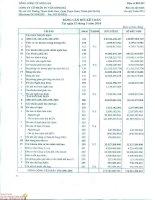 Báo cáo tài chính công ty mẹ quý 1 năm 2014 - Công ty Cổ phần Tư vấn Sông Đà