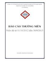 Báo cáo thường niên năm 2013 - Công ty cổ phần Sản xuất Kinh doanh Xuất nhập khẩu Dịch vụ và Đầu tư Tân Bình