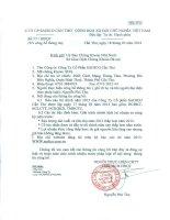 Báo cáo tài chính năm 2013 (đã kiểm toán) - Công ty Cổ phần Sadico Cần Thơ