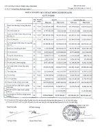 Báo cáo KQKD công ty mẹ quý 4 năm 2010 - Công ty Cổ phần Phát triển Nhà Thủ Đức