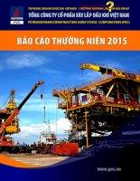 Báo cáo thường niên năm 2015 - Tổng Công ty cổ phần Xây lắp Dầu khí Việt Nam