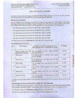 Báo cáo tài chính năm 2008 (đã kiểm toán) - Công ty Cổ phần Viễn thông Thăng Long