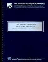 Báo cáo tài chính năm 2014 (đã kiểm toán) - Công ty Cổ phần Sara Việt Nam