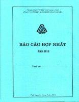 Báo cáo tài chính hợp nhất quý 4 năm 2013 - Công ty cổ phần Gang thép Thái Nguyên
