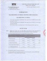 Nghị quyết Đại hội cổ đông thường niên năm 2013 - Công ty Cổ phần Khoáng sản Sài Gòn - Quy Nhơn