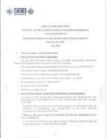 Báo cáo thường niên năm 2012 - Công ty Cổ phần Chứng khoán SAIGONBANK BERJAYA