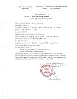 Báo cáo tài chính hợp nhất quý 3 năm 2015 - Công ty Cổ phần Tập đoàn Thiên Long