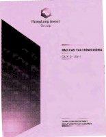 Báo cáo tài chính công ty mẹ quý 2 năm 2011 - Công ty Cổ phần Tập đoàn Đầu tư Thăng Long