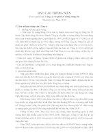 Báo cáo thường niên năm 2010 - Công ty Cổ phần Xi măng Sông Đà