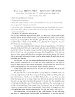 Báo cáo tài chính năm 2006 (đã kiểm toán) - Công ty Cổ phần Xi măng Sông Đà