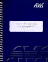 Báo cáo tài chính hợp nhất quý 3 năm 2009 - Công ty Cổ phần Tập đoàn Thái Hòa Việt Nam