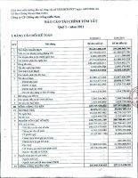 Báo cáo tài chính công ty mẹ quý 1 năm 2011 - Công ty Cổ phần Giống cây trồng Miền Nam