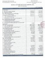 Báo cáo tài chính công ty mẹ quý 1 năm 2014 - Ngân hàng Thương mại Cổ phần Sài Gòn