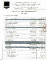 Báo cáo tài chính hợp nhất quý 4 năm 2009 - Tổng Công ty cổ phần Xây lắp Dầu khí Việt Nam