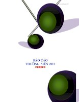 Báo cáo thường niên năm 2011 - Công ty Cổ phần Nước giải khát Chương Dương