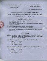 Nghị quyết đại hội cổ đông ngày 24-11-2010 - Công ty Cổ phần Công nghiệp Thương mại Sông Đà