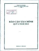 Báo cáo tài chính công ty mẹ quý 4 năm 2012 - Công ty Cổ phần Giống cây trồng Miền Nam