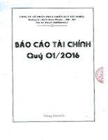 Báo cáo tài chính công ty mẹ quý 1 năm 2016 - Công ty cổ phần Phát triển Khu Công nghiệp Tín Nghĩa