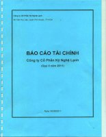 Báo cáo tài chính công ty mẹ quý 2 năm 2011 - Công ty Cổ phần Kỹ Nghệ Lạnh