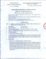 Nghị quyết đại hội cổ đông ngày 27-10-2010 - Công ty Cổ phần Sông Đà 207