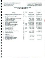 Báo cáo tài chính hợp nhất quý 3 năm 2011 - Công ty cổ phần Chứng khoán Sài Gòn