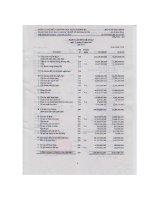 Báo cáo tài chính năm 2007 - Công ty cổ phần Đầu tư và Thương mại Dầu khí Sông Đà