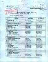 Báo cáo tài chính quý 4 năm 2009 - Công ty Cổ phần Mía đường Nhiệt điện Gia Lai