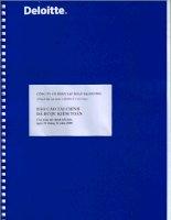 Báo cáo tài chính năm 2008 (đã kiểm toán) - Công ty Cổ phần Tập đoàn Đại Dương
