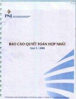 Báo cáo tài chính quý 3 năm 2008 - Công ty Cổ phần Vàng bạc Đá quý Phú Nhuận