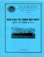 Báo cáo tài chính hợp nhất quý 4 năm 2013 - Công ty Cổ phần Vận tải và Thuê tàu biển Việt Nam