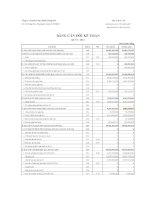 Báo cáo tài chính quý 1 năm 2012 - Công ty Cổ phần Dược phẩm Phong Phú
