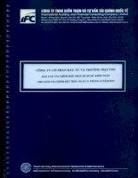 Báo cáo tài chính hợp nhất năm 2014 (đã kiểm toán) - Công ty cổ phần Đầu tư và Thương mại VNN