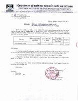 Báo cáo tài chính hợp nhất quý 2 năm 2013 - Tổng Công ty Cổ phần Tái bảo hiểm quốc gia Việt Nam