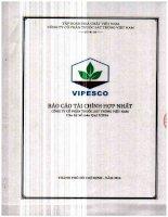 Báo cáo tài chính hợp nhất quý 1 năm 2016 - CTCP Thuốc sát trùng Việt Nam
