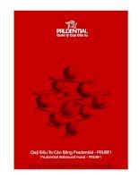 Báo cáo thường niên năm 2009 - Quỹ Đầu tư Cân bằng Prudential