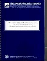 Báo cáo tài chính công ty mẹ năm 2013 (đã kiểm toán) - Tổng công ty Cổ phần Xây dựng điện Việt Nam