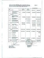 Báo cáo KQKD công ty mẹ quý 4 năm 2010 - Công ty Cổ phần Bất động sản Du lịch Ninh Vân Bay