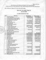 Báo cáo tài chính quý 3 năm 2009 - Công ty Cổ phần VICEM Vật tư Vận tải Xi măng